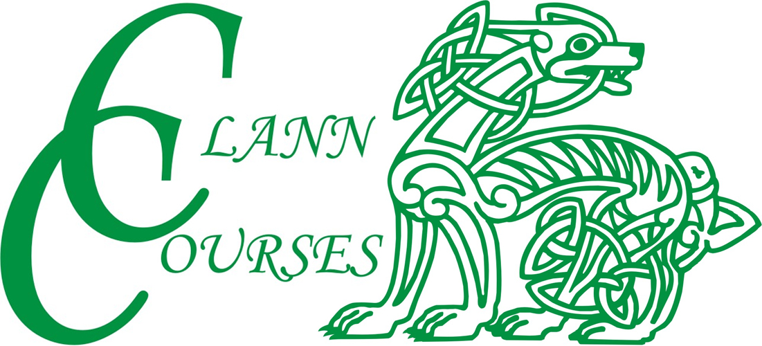Cursos de verano Clann Courses
